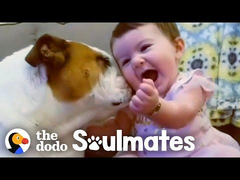 Adorable Kids and Dogs Growing Up Together Video