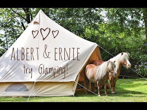 Albert & Ernie try GLAMPING!