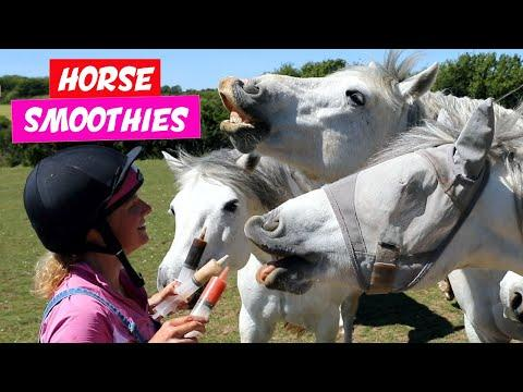 Healthy Horse Smoothies