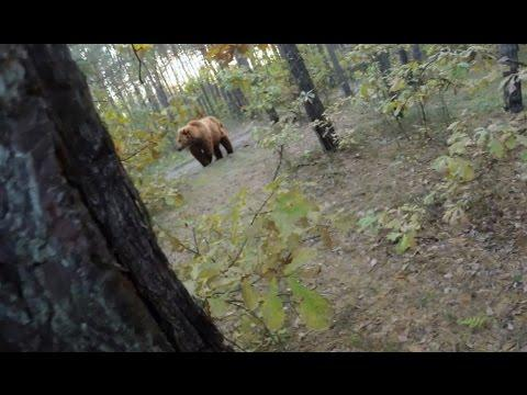Bear Attack - Man Attempts To Run Away From Attacking Bear!