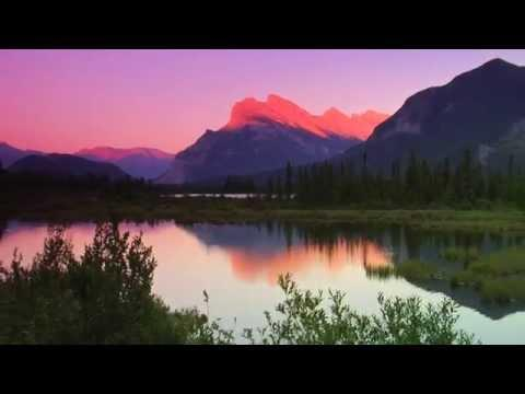 Nature's Splendor A Calming, Tranquil Visit To National Parks