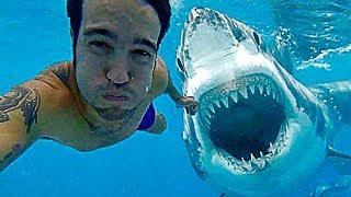 13 SURPRISE SHARK ATTACKS CAUGHT ON CAMERA