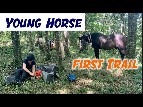 Young Oisin's first time out on a trail Video.