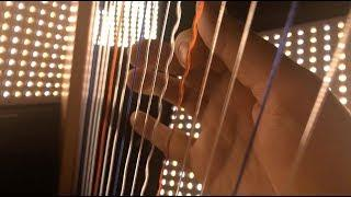 Stranger Things Theme on a Harp/Cello