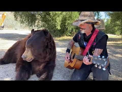 Animal Crackers The Greatest 3 1/2 Minutes of Animals Loving Music. Assorted Version #Video