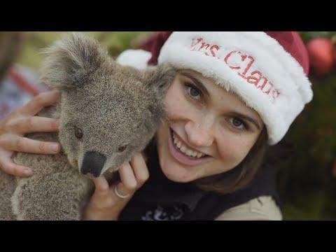 Zoo Animals in Australia Celebrate Christmas 2019