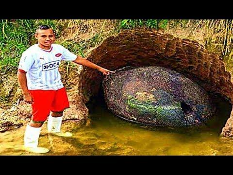 Farmer Got More Than He Bargained For When He Dug This Up