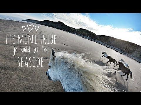 My mini tribe go wild at the seaside!