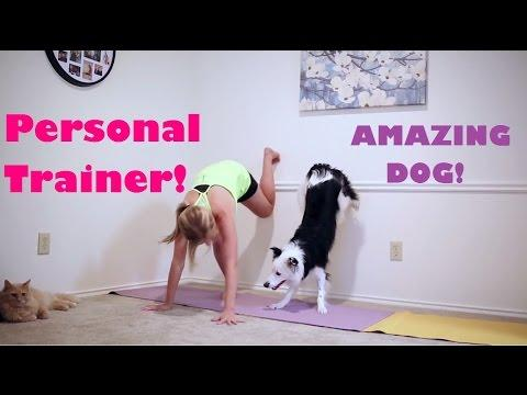 My Personal Trainer, Paige The Dog!