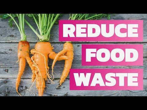Would You Eat Ugly Food to Save Our Planet? | Funded in America
