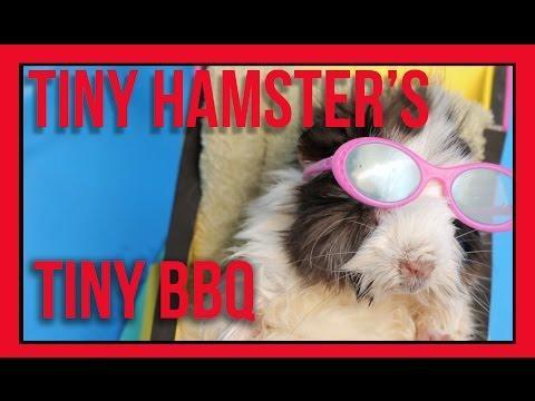 Tiny Hamster's Tiny BBQ