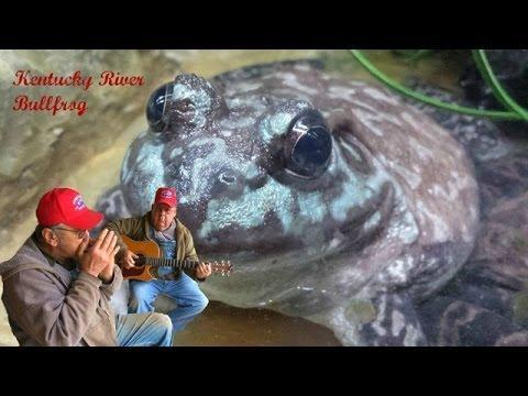 Kentucky River Bullfrog The Moron Brothers Bluegrass Music Comedy