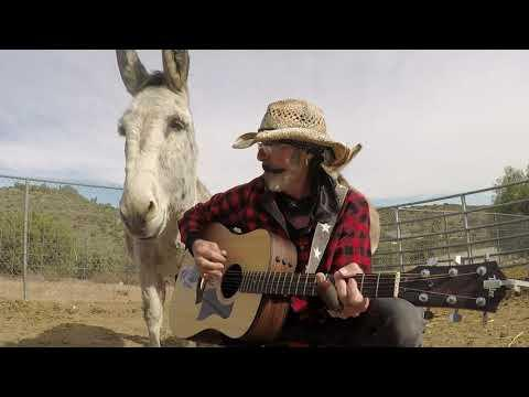 Hazel the Donkey in Rare Form Play That Music Video