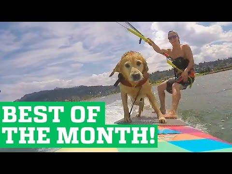 PEOPLE ARE AWESOME - BEST OF THE MONTH (SEPTEMBER 2015)