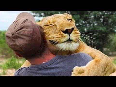Animal Hugs - Animals Hugging People - Animals Hugging Humans - Hugging Animals Video
