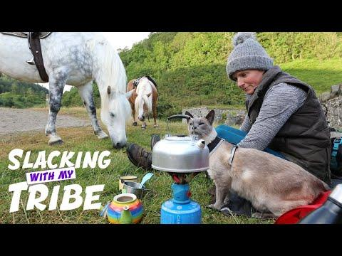 Tribe ride into the woods Video - the CAT has way better balance than me! - Emma Massingale