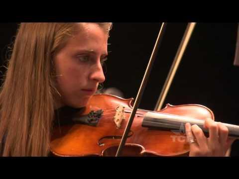 Rachel Deschner's Steel Viola