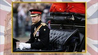 Passage: Prince Harry on the royals' future
