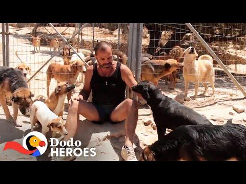 Man Gives Every Dog He Saves The Best Life #Video