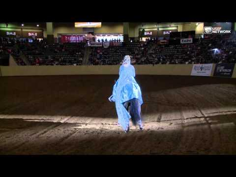 Incredible Dancing Horse Wins World Freestyle Reining Title