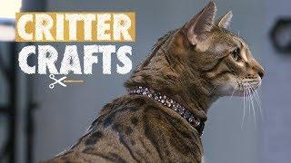 DIY Bedazzled Collars | Critter Crafts