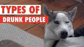 8 Types of Drunk People As Told By Pets