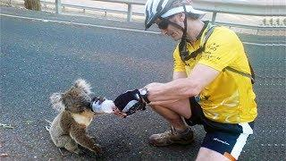 TOP 15 INCREDIBLE ACTS OF KINDNESS