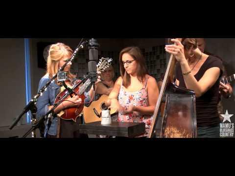 The Bankesters - Cups (When I'm Gone) [Live At WAMU's Bluegrass Country]