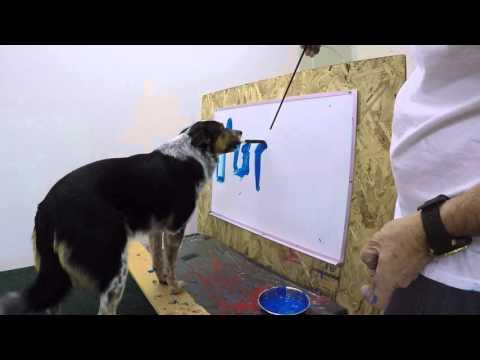 Jumpy The Dog Signs His Autograph
