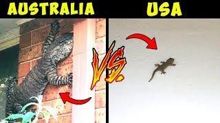 10 REASONS NOT TO VISIT AUSTRALIA