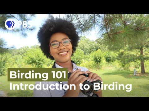 Introduction to Birding Video| Birding 101 with Sheridan Alford