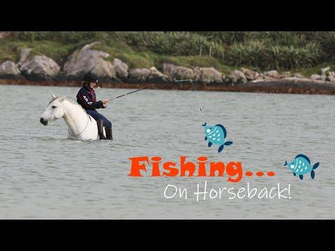 Fishing, Foraging, Cockling with Horses at Liberty! ¦ Wilderness ¦ Island Life