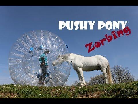 Pony Zorbing!