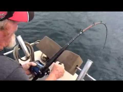 Shark Steals Fish Off Fisherman's Line