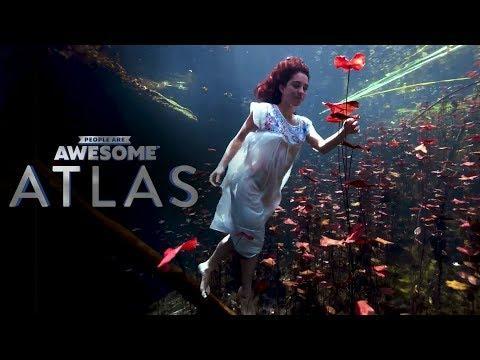 Freediving in the Yucatan Peninsula | PAA Atlas