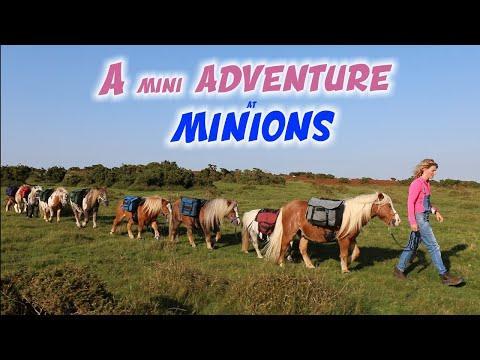 8 Minis go to Minions Video - Emma Massingale