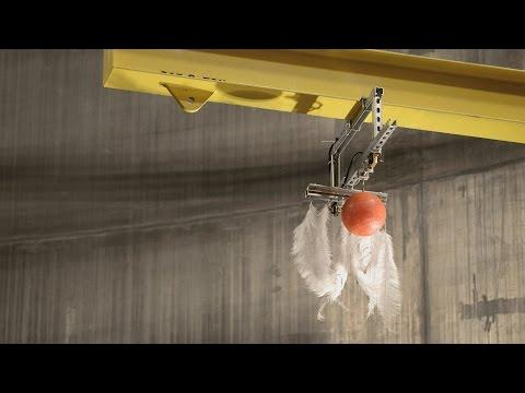 Bowling Ball And Feather Dropped In A Vaccum