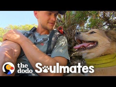 This Guy's Walking His Dog Around the World   The Dodo Soulmates