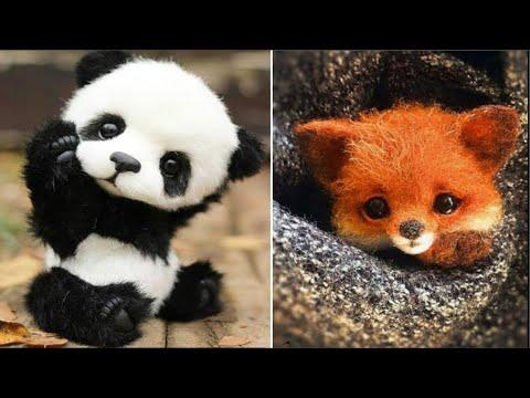 Cute baby animals Videos Compilation cute moment of the animals - Cutest Animals #30
