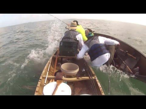 Fishing For Sharks In A Boat That's Too Small Video. Your Daily Dose Of Internet.