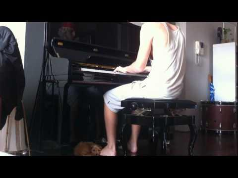 Puppy Loves It When His Human Plays The Piano