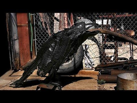 Tire Ravens (Texas Country Reporter)