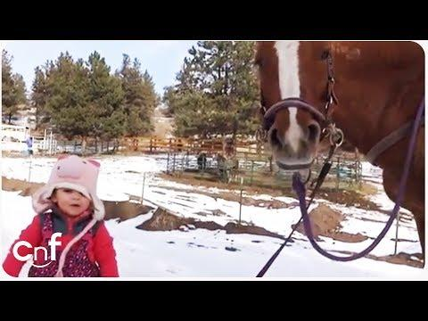 Emma And Cinnamon | Little Girl And Horse Are Best Friends!