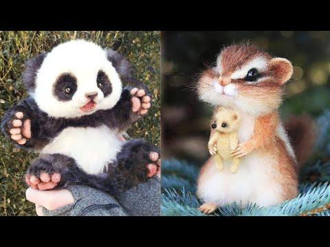 Cutest baby animals Videos Compilation Cute moment of the Animals - Cutest Animals #6