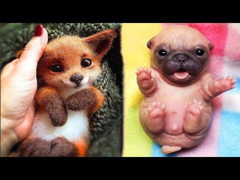 Cutest baby animals Videos Compilation Cute moment of the Animals - Cutest Animals #20
