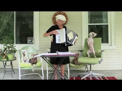 Accordion Loving Dog