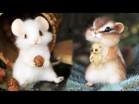 Cutest baby animals Videos Compilation Cute moment of the Animals - Cutest Animals #24