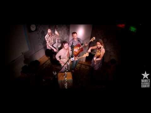 Driftwood - Company Store [Live At WAMU's Bluegrass Country]