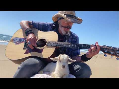 Magical Baby Goat Loves Classic Rock Music On The Beach Video