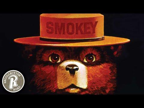 The Story of SMOKEY BEAR - Life in America #Video